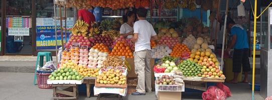 Fruit shop (Angeles Field Ave)