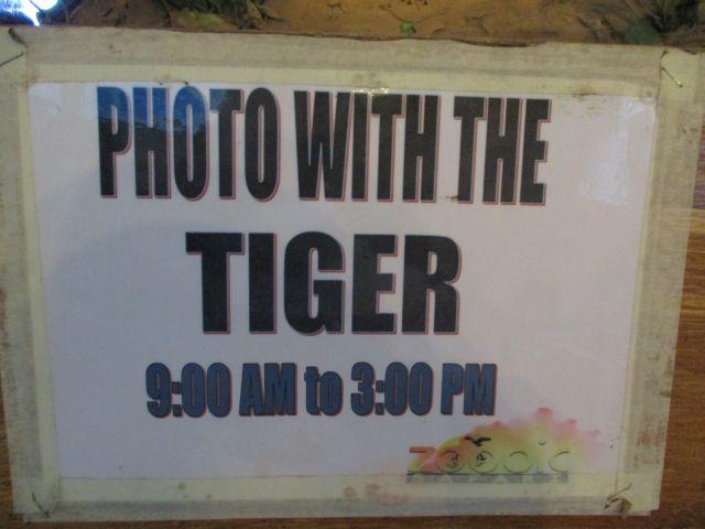 ズービックサファリでトラと写真