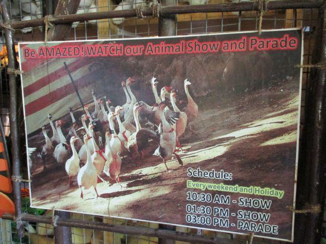ズービックサファリのアニマルショー&パレード