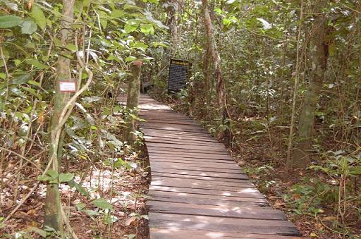 アンダーグラウンドリバー - 洞窟へ続く通路