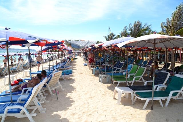 セームビーチ - 並べられたビーチベット&パラソル