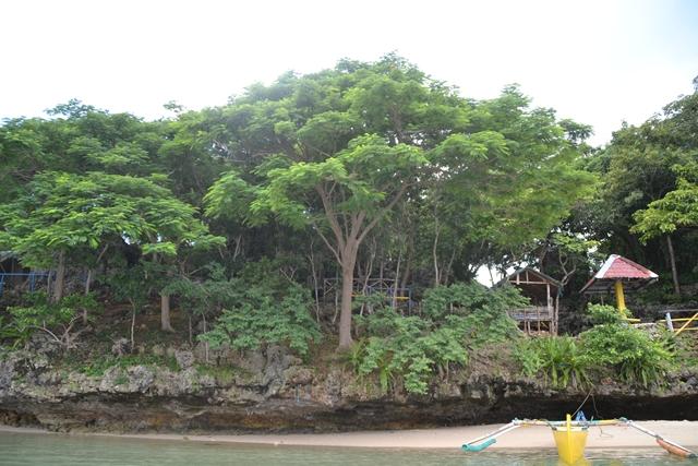 ハンドレッドアイランド - チルドレンズ島 (Childlen's Is.)