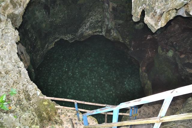 ハンドレッドアイランド - マルコス島のイメルダケーブを上から望む