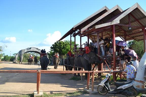 途中の象に乗れる場所