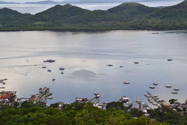 タプヤス山 - 山頂からの眺め