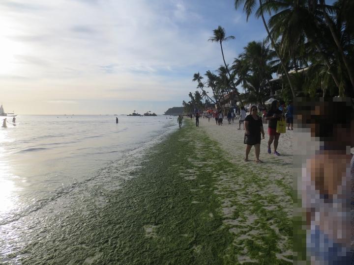 ボラカイ島のホワイトサンドビーチ2から1に向かう周辺の緑藻
