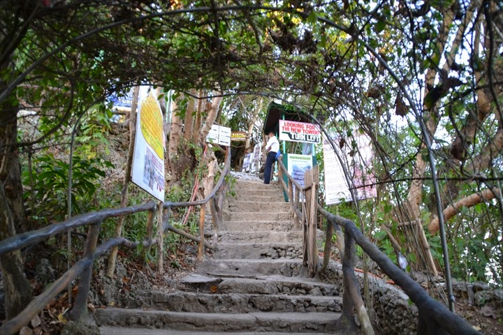 マウントロホ展望台に続く階段