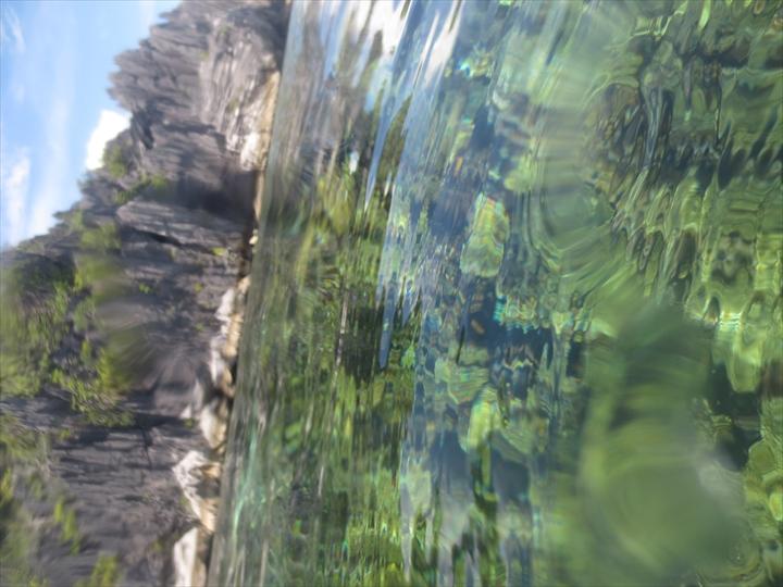サンゴがメチャ綺麗だったリーフガーデン(11)