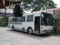 スワグマンのフライザバス