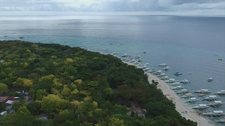 ボホール島・バリカサグアイランド(1)